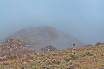 in the foggy mountains 1